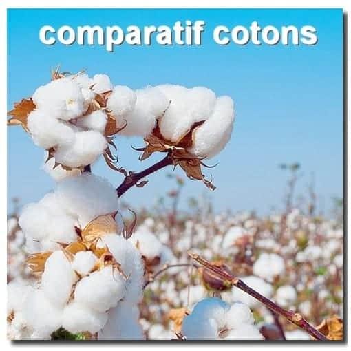 comparatif coton.jpg
